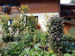 Gartenfuelle_Gaestehaus-Tritscher